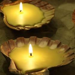 简单自制贝壳蜂蜡蜡烛的方法图解教程