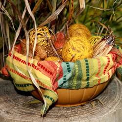 最简单自制秋天装饰碗的做法教程图解