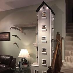 男子在他的起居室里建造了两座超高的猫塔