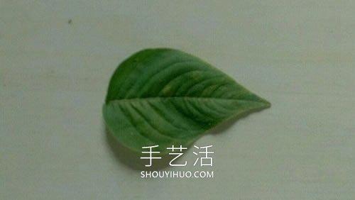 �淙~�w花瓣粘�N��金�~�D片��斡制�亮 -  www.shouyihuo.com