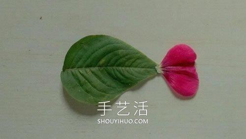 �淙~花瓣粘�N��金�~电话后说到�D片��斡制�亮 -  www.shouyihuo.com