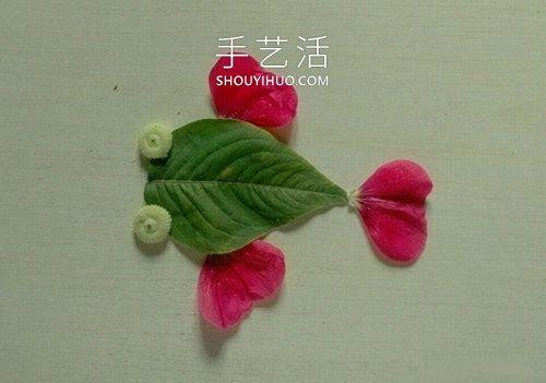 �淙~花瓣粘�N��金�~�D片��味�他又漂亮 -  www.shouyihuo.com