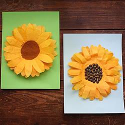 幼儿园手工制作咖啡滤纸向日葵花