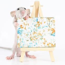 才华横溢的老鼠创作的微型画,被抢购一空!