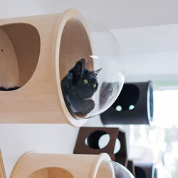 模块化猫家具,在不牺牲设计的同时让猫快乐!