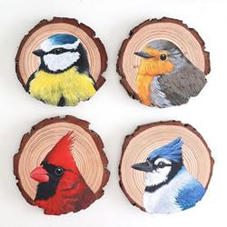 艺术家花了100天的时间在木片上绘画100种鸟类