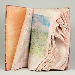 艺术家将书籍DIY转变为晶莹剔透的雕塑作品