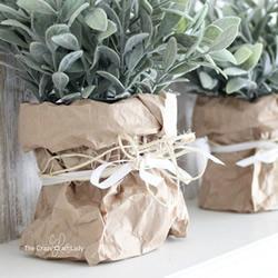 使用牛皮纸袋子制作用于室内绿化的纸花盆